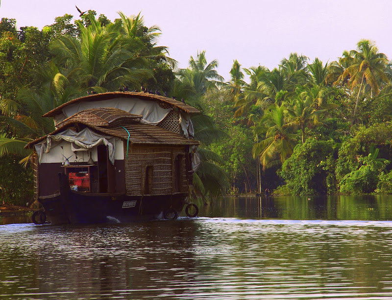 postcard from a kerala holiday