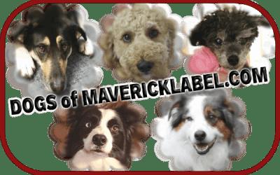 Dogs of MaverickLabel.com, Part 1