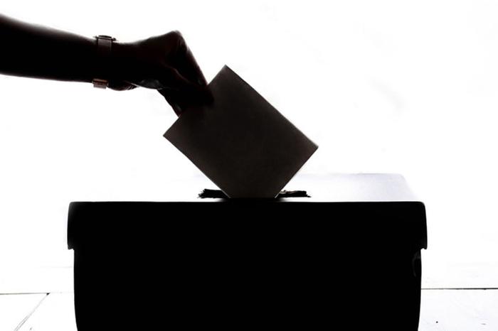 Política, Constitución y voto