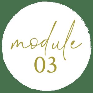 module3a