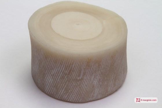 Come distinguere il Corallo dal Corallo Bamboo – MaxGioie jewellery