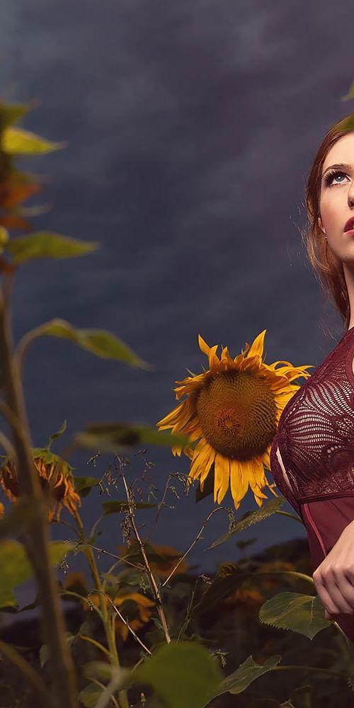 Fotoshooting in einem Sonnenblumenfeld