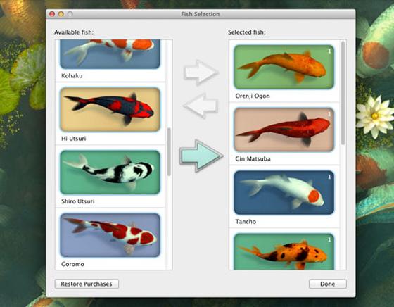 Koi-Pond-3D-Mac-OSX-Aquarium-Poissons-Wallpaper-3