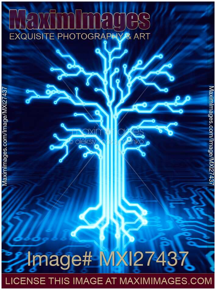 internet cable wiring diagram ford steering box stock illustration: glowing digital tree circuits conceptual illustration | maximimages image ...