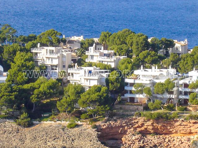 MaxMallorca Immobilien in Port Andratx  Camp de Mar seit 1996 Villas Fincas Apartments Penthaus