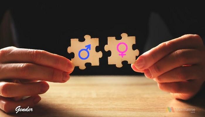 Pengertian Gender Adalah