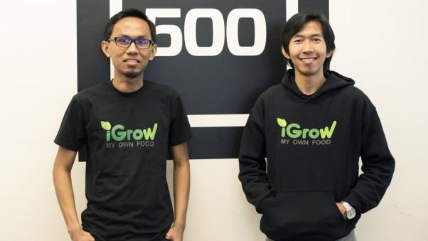 startup iGrow