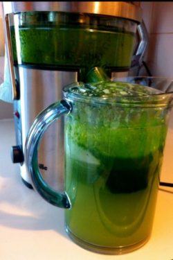 Lean and Green Juice in Juicer