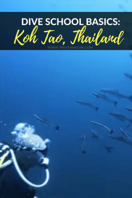 Dive School Basics in Koh Tao Thailand - Max Pankow Adventures