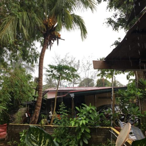 Rain in langkawi