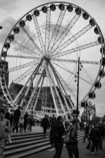 Dag 19 met onderwerp Oog. Tetel: het oog van Rotterdam.