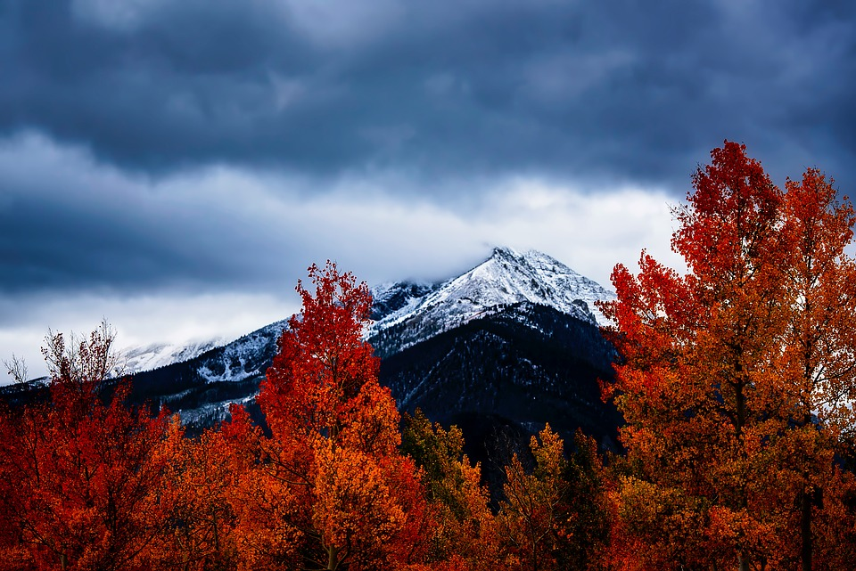 Free Fall Season Desktop Wallpapers Free Photo Autumn Fall Mountains Landscape Colorado Colors