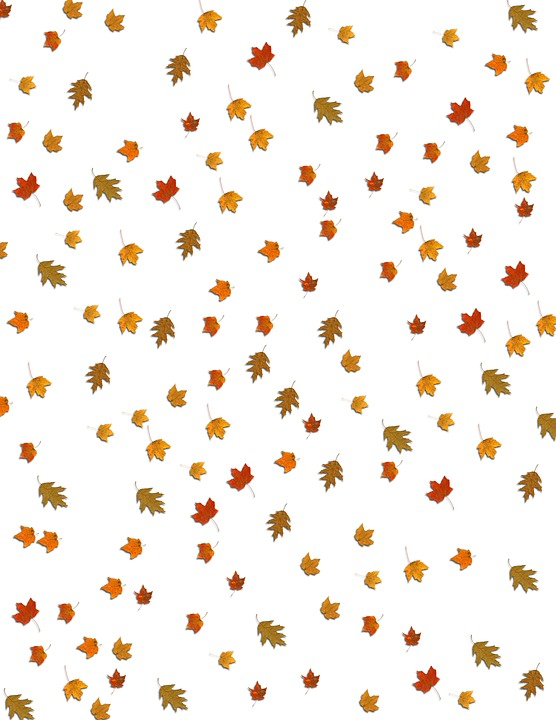 Free Fall Nature Wallpaper Free Photo Falling Fall Leaves Background Max Pixel