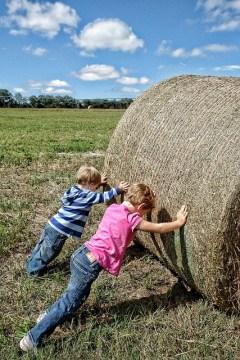 children work hard with exercise partner