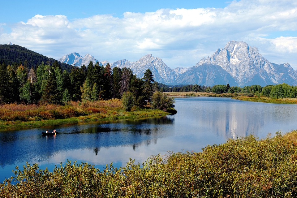 Fall Leaves Ponds Computer Wallpaper Free Photo Forest River Mountains Woods Wyoming Teton