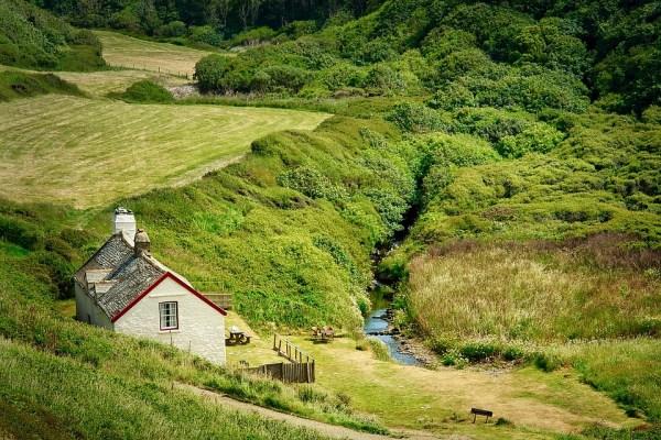 free grass nature hill travel