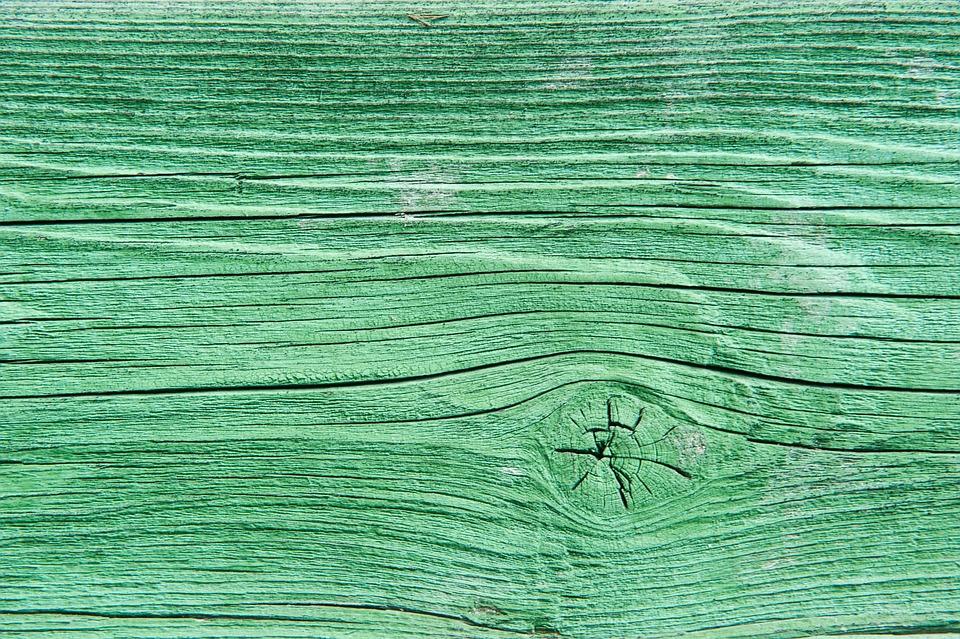 free photo texture green