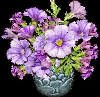 Violet Wallpaper Hd Free Photo Arrangement Vase Flower Max Pixel