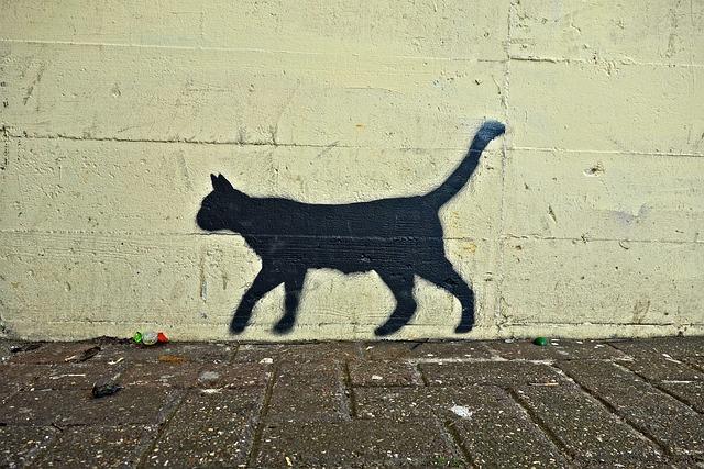 Wallpaper Drawing Girl Free Photo Street Art Paint Spray Cat Drawing Graffiti