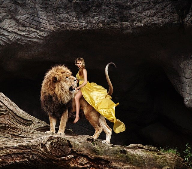 Girl Wallpaper For Computer Free Photo Predator Ride Pet Woman Lion Flowing Dress