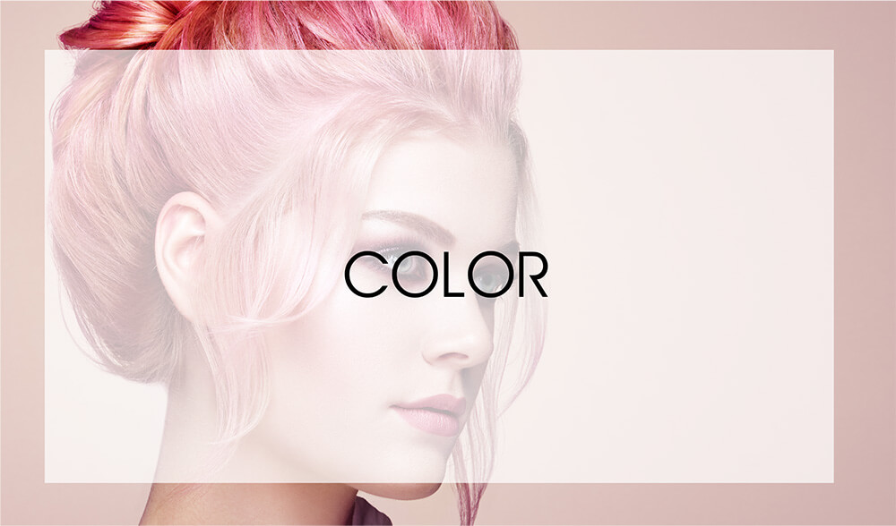 Maxx Studio Hair Color