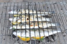 grilled fish2