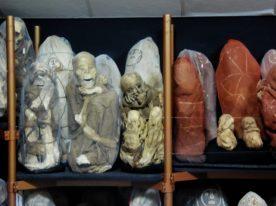 Es gibt 219 Mummien...