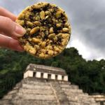 Le cookie voyageur visite Palenque (PHOTOS)