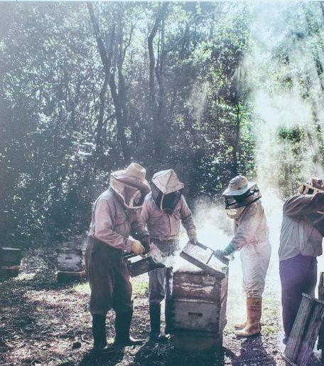 """Exposition Photo """"Le miel des dieux"""" de Nadia Shira Cohen"""