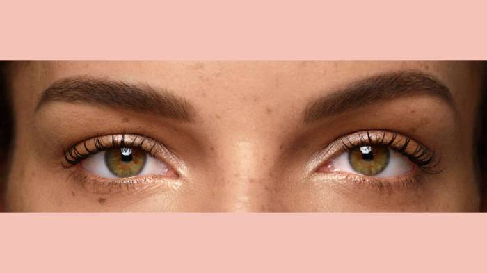 BROW GUIDE:  How to Fix Gaps and Holes 6