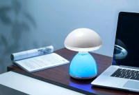 Colorful Color LED Table Lamp Factory|LED Desk Lamp with ...