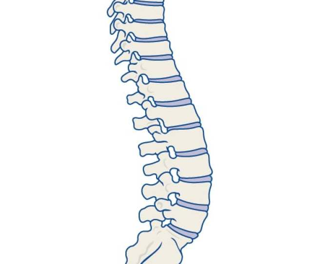 Low Back Pain Caused By Spinal Degeneration And Injury