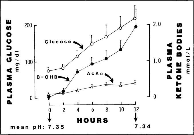 Treatment Options for Insulin-Dependent Diabetes Mellitus