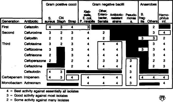 Cephalosporin, Carbapenem, and Monobactam Antibiotics
