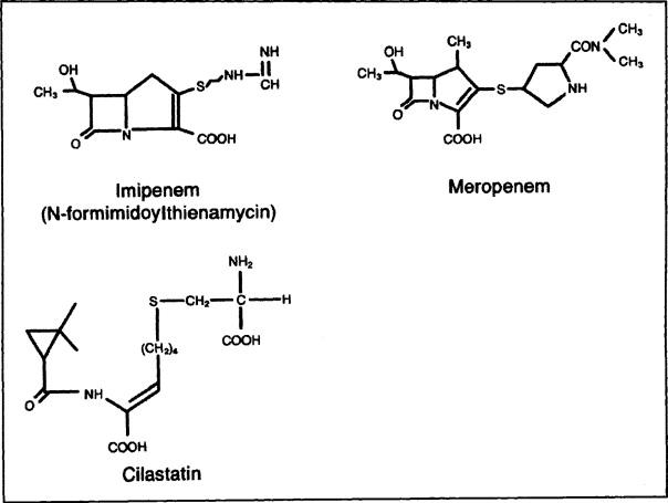 Carbapenems and Monobactams: Imipenem, Meropenem, and
