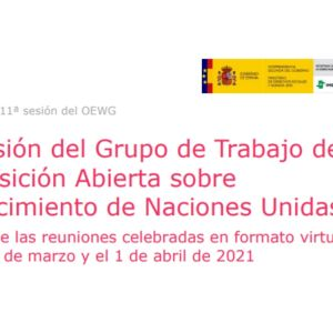 Envejecimiento Grupo de Trabajo de Naciones UNIDAS