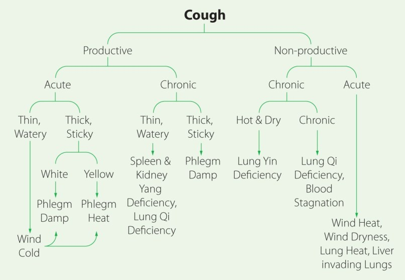 Chinese Herbal Medicine For Dry Cough | Diydrywalls org