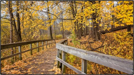 trail photo by Joe deSousa