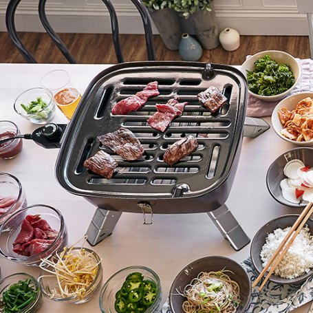 Pampered Chef Indoor Outdoor Portable Grill