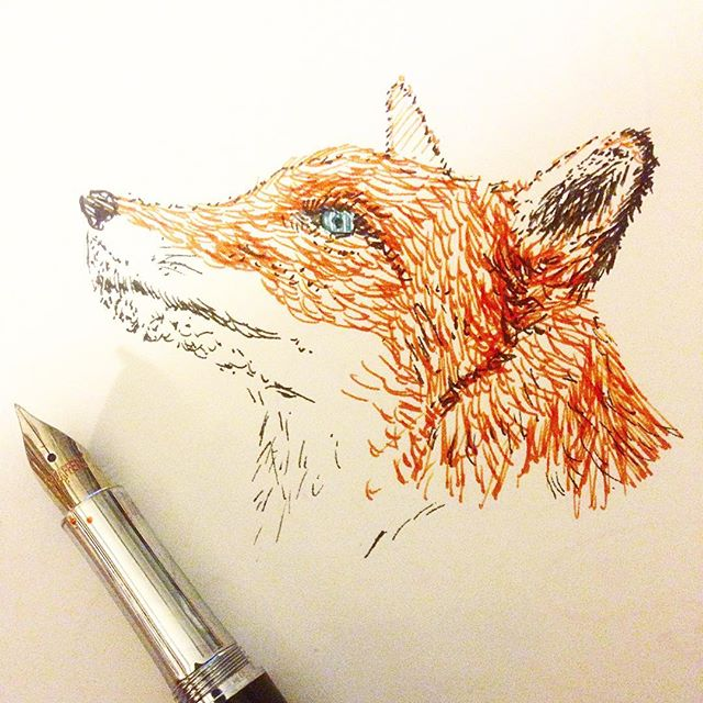 Fountain pen sketch of a fox