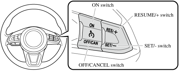 Cruise Control Switch