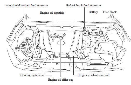 Mazda Coffe Decorative: Mazda 3 Engine Diagram