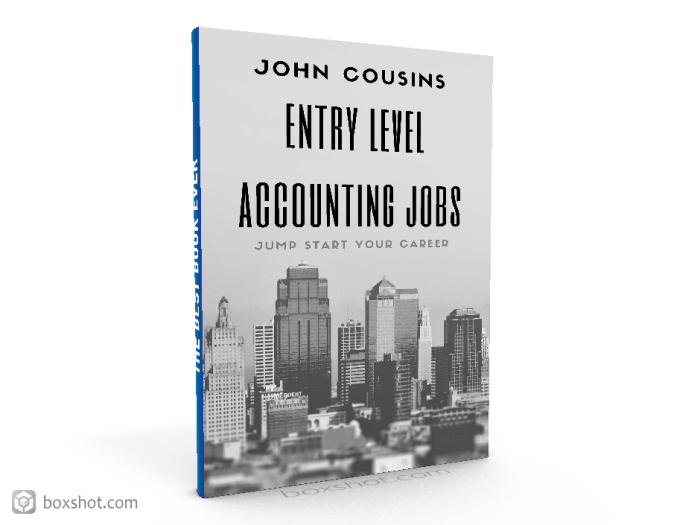 accounting jobs 3D