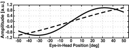The double magnetic induction method to measure 2D head