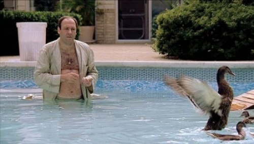 James-Gandolfini-Tony-Soprano-ducks-550x314 (1)