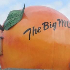 The Big Mo: Feeling and Rationalizing 'Momentum'