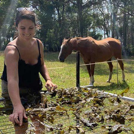 Australian Seaweed - mbK-Interactive-Tour_reviews