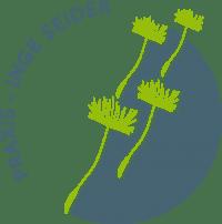 MBSR 8-Wochenkurs – MBSR-Achtsamkeitstraining