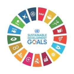 Sustainable Development Goals Grafik