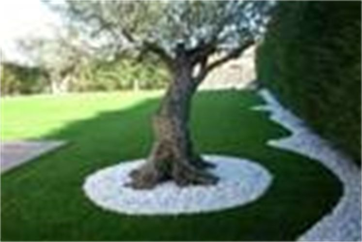 Idee deco parterre jardin  Mc immo